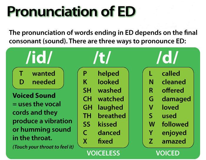 Cách phát âm ed, s, es quan trọng  nhất