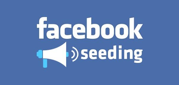 Để nhân viên của bạn tiến hành seeding bài viết