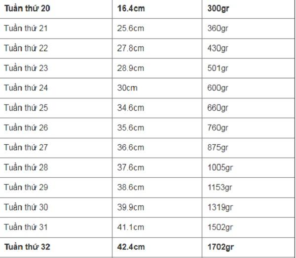 Bảng chiều cao và cân nặng của thai nhi từ tuần 20 - 32