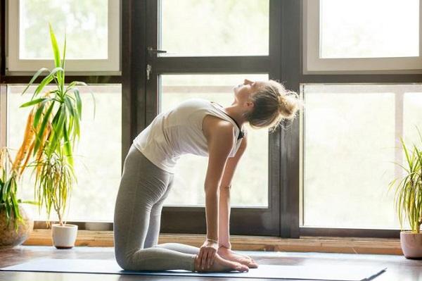 Bật mí 3 khóa học Yoga tại nhà chất lượng tốt nhất.