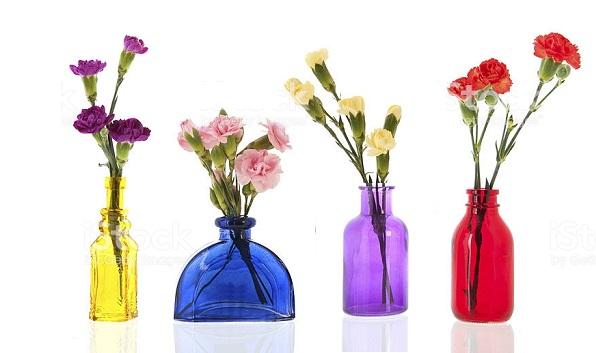 Cách cắm hoa cẩm chướng bình cao vừa đẹp vừa sang trọng