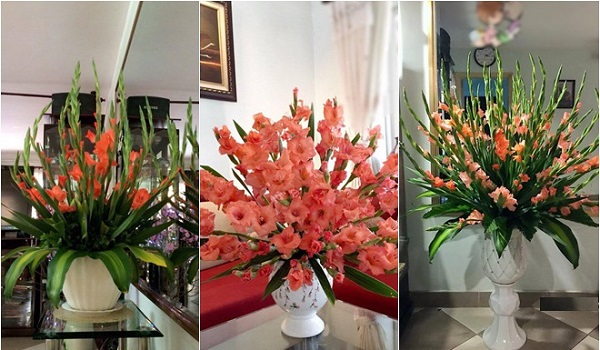 Hoa lay ơn được cắm theo kiểu tay phật được bắt gặp nhiều trong những ngày tết