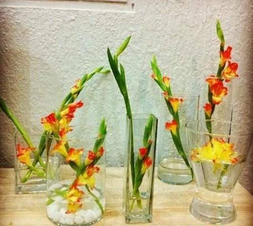 Nghệ thuật cắm hoa lay ơn theo phong cách hiện đại