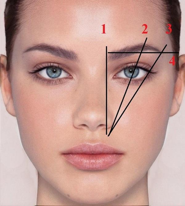Dùng mascara để cố định màu sắc và kiểu dáng cho lông mày