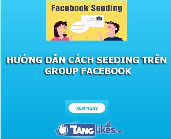 Một số kinh nghiệm seeding facebook từ chuyên gia