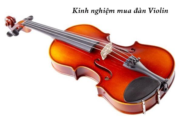 mua đàn Violin
