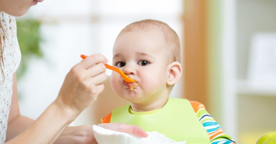 cho trẻ ăn dặm ngày mấy bữa