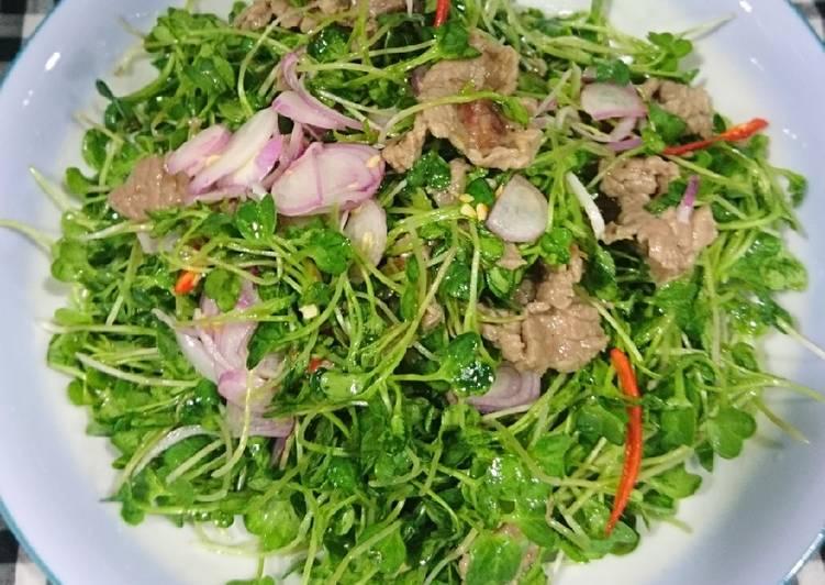 Rau mầm trộn thịt bò