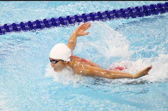 Các kiểu bơi lội