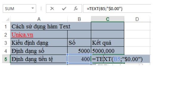 Mô tả cách sử dụng của hàm text và ứng dụng