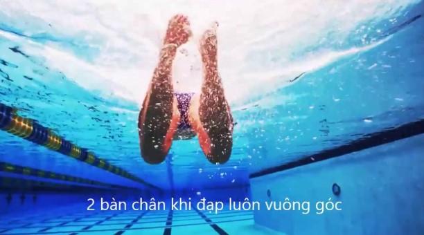 Kỹ thuật bơi ếch