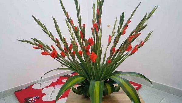 cách cắm hoa dơn đẹp