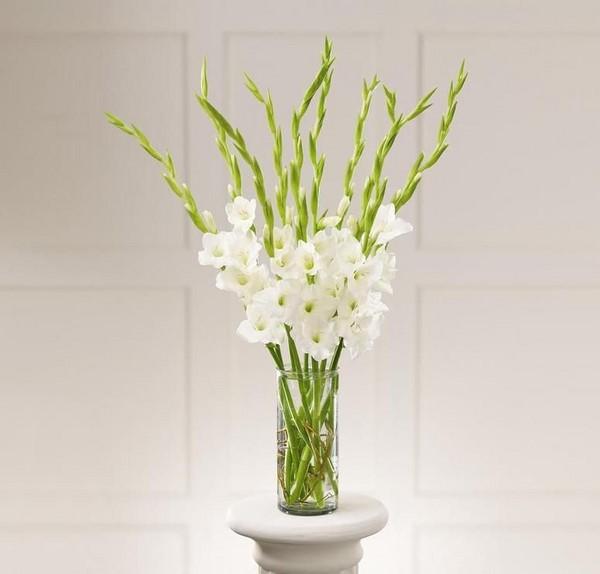cách cắm hoa dơn đơn giản