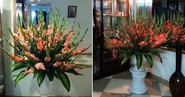 cách cắm hoa dơn tại nhà