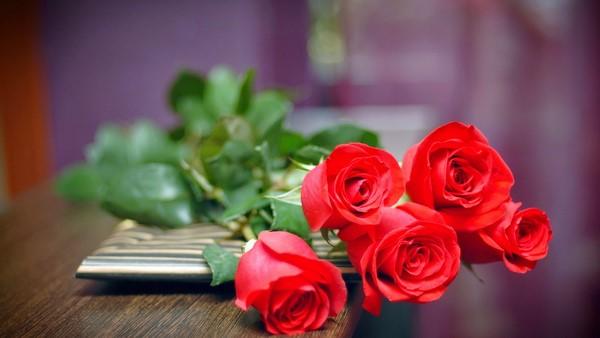 Những loài hoa nên để trong nhà ngày Tết