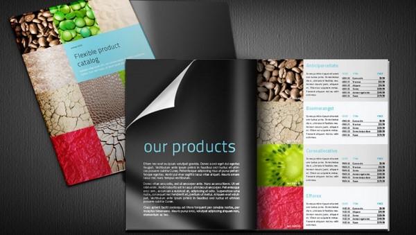 thiet-ke-catalogue-2.jpg%20.jpg