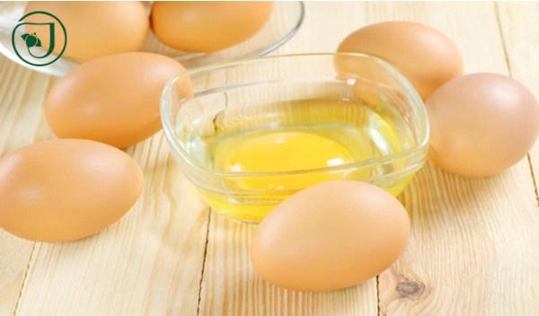 Trứng gà không chỉ tốt cho sức khỏe mà còn có tác dụng dưỡng da