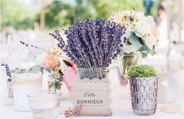 Lavender có mùi hương rất dễ chịu