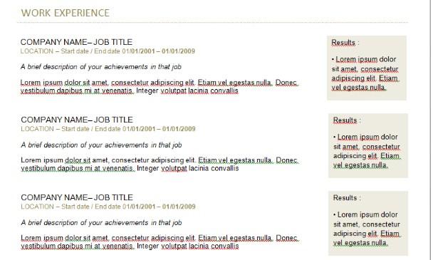 Ví dụ về kinh nghiệm làm việc trong CV tiếng Anh