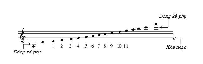 Tìm hiểu và biết cách nhìn một khuông nhạc