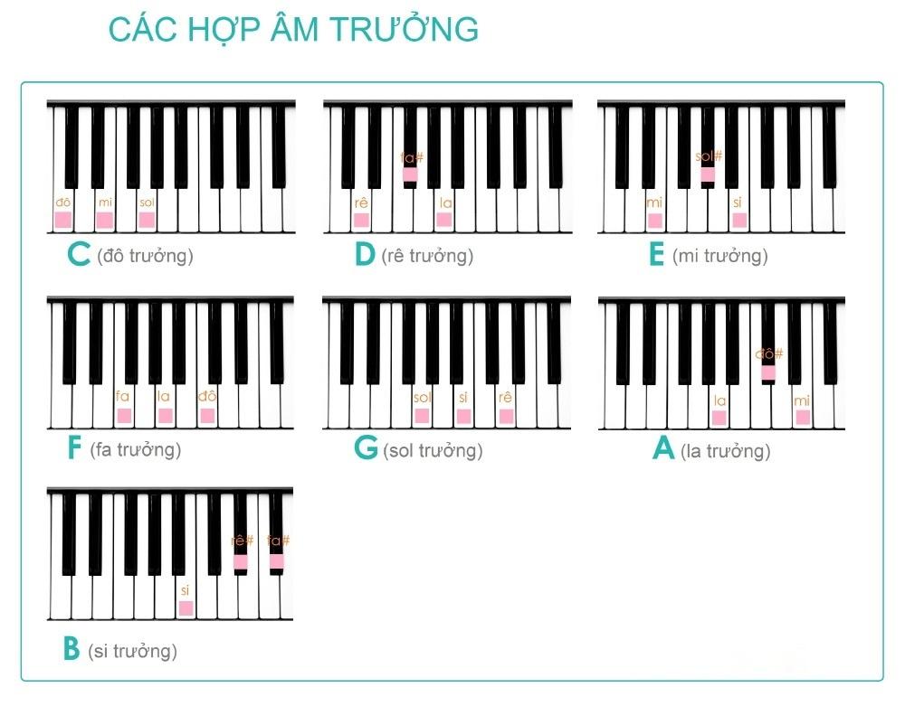 Bảng hợp âm Piano trưởng
