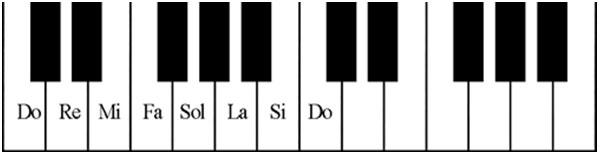 Cách học đàn Organ tại nhà