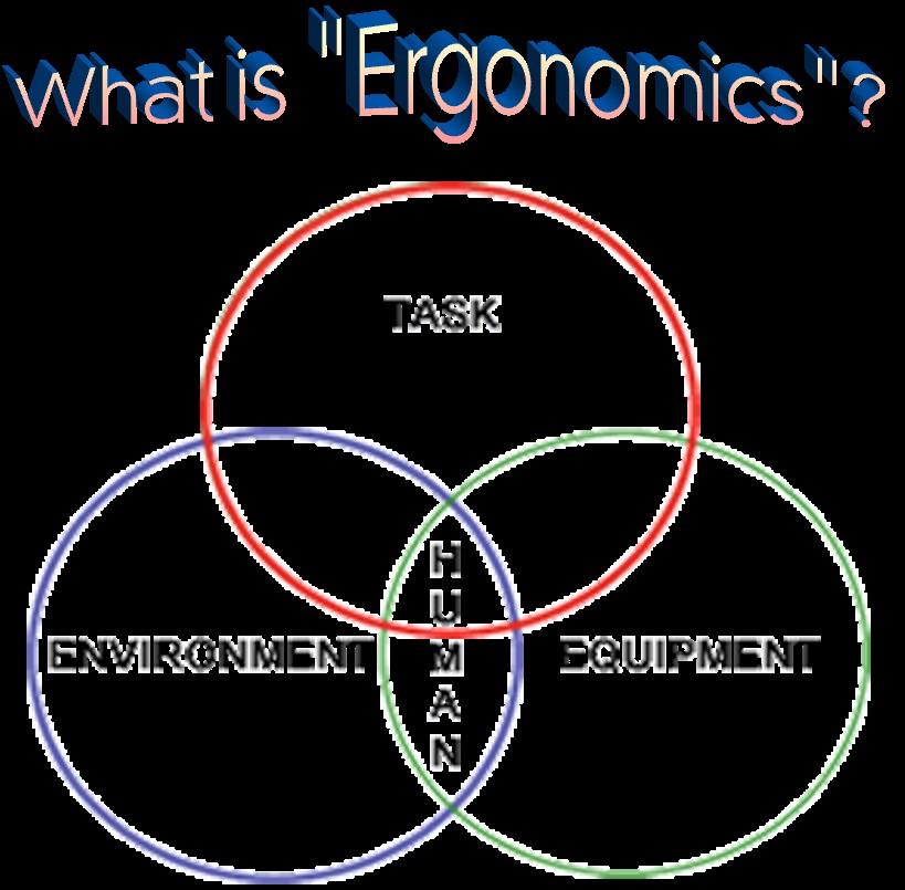 Ergonomic là gì?