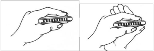 Khi học Harmonica tại nhà bạn cần chú ý học cách cầm kèn