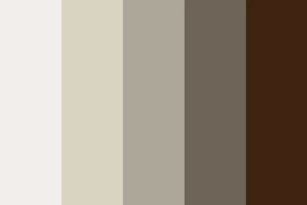 Màu trung tính là gì?