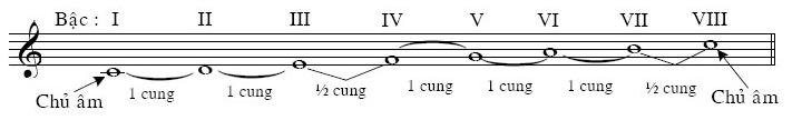 kiến thức nhạc lý guitar cơ bản
