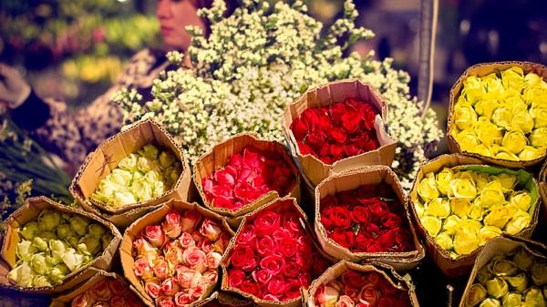 Kinh doanh hoa ngày lễ tết