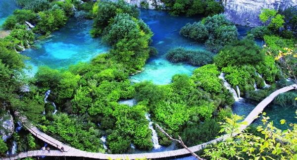 Hình ảnh vườn quốc gia vô cùng đẹp tại Việt Nam