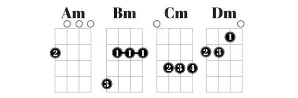 Cách bấm hợp âm cho từng âm thứ (m)