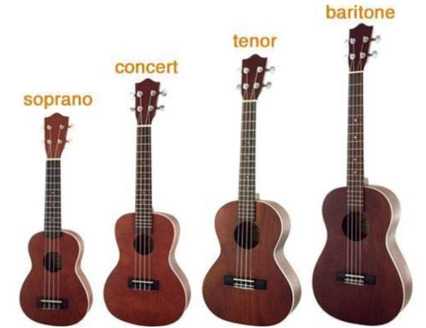 Bốn loại đàn ukulele được phân loại dựa theo kích thước của đàn